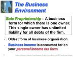 the business environment1
