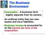 the business environment3