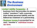 the business environment4