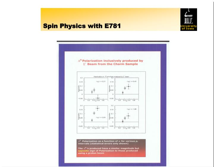 Spin Physics with E781