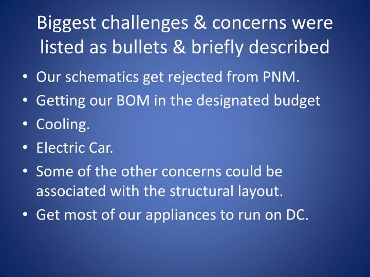 Biggest challenges & concerns were listed as bullets & briefly described