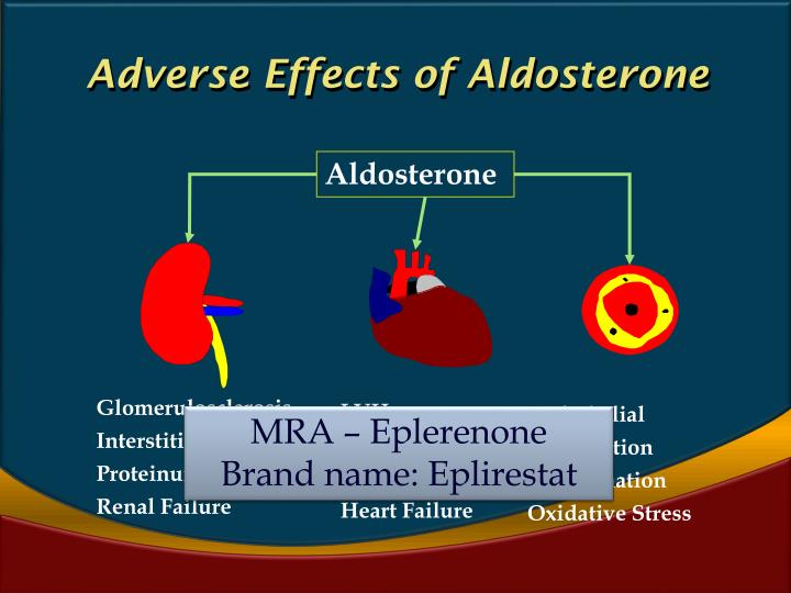 Adverse Effects of Aldosterone