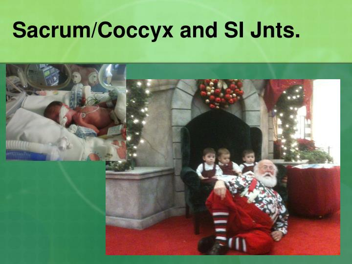 sacrum coccyx and si jnts