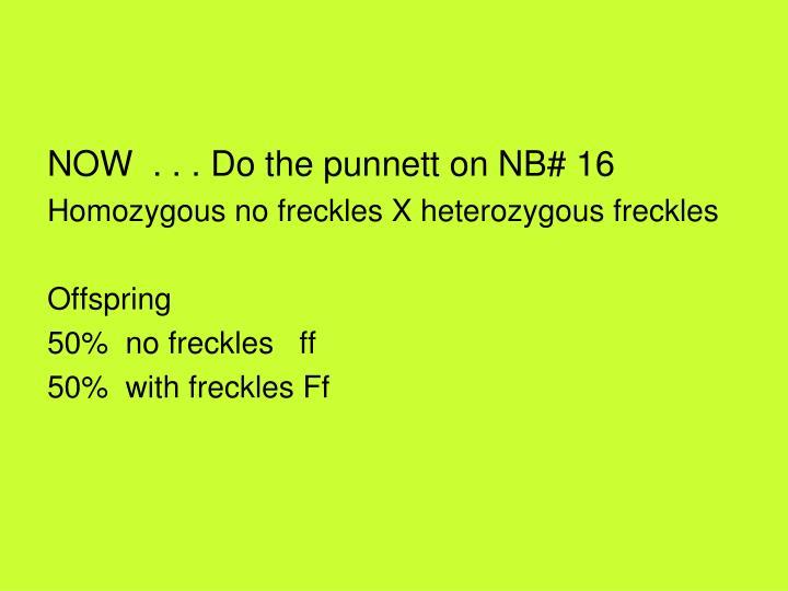 NOW  . . . Do the punnett on NB# 16