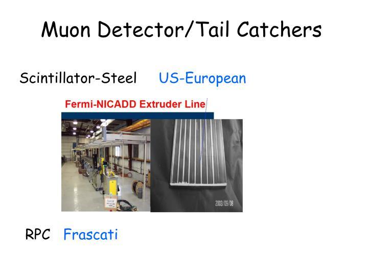 Muon Detector/Tail Catchers