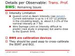 details per observable trans prof bws remaining issues