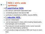 nos nitric oxide synthase