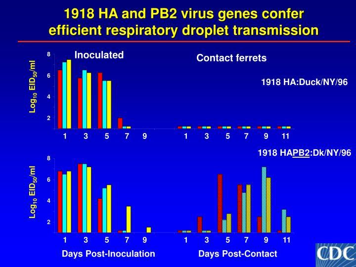 1918 HA and PB2 virus genes confer efficient respiratory droplet transmission