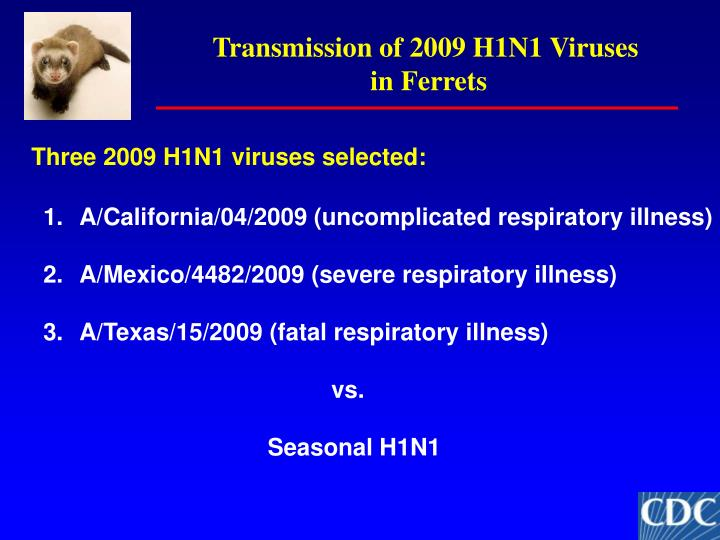 Transmission of 2009 H1N1 Viruses