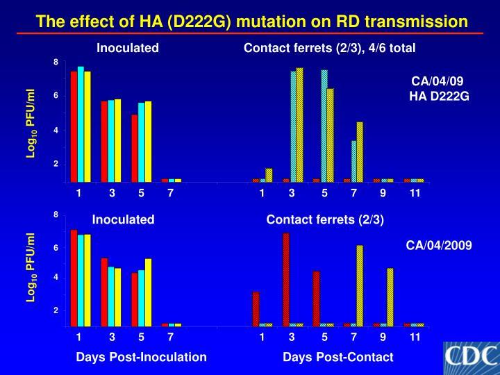 The effect of HA (