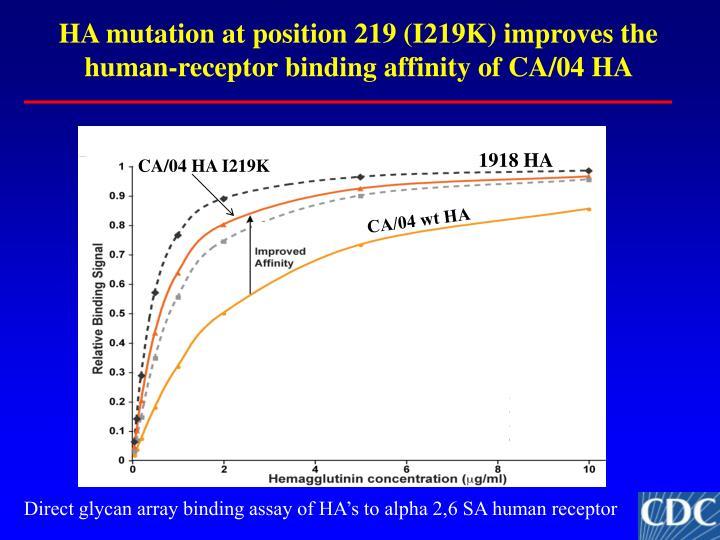 HA mutation at position 219 (I219K) improves the