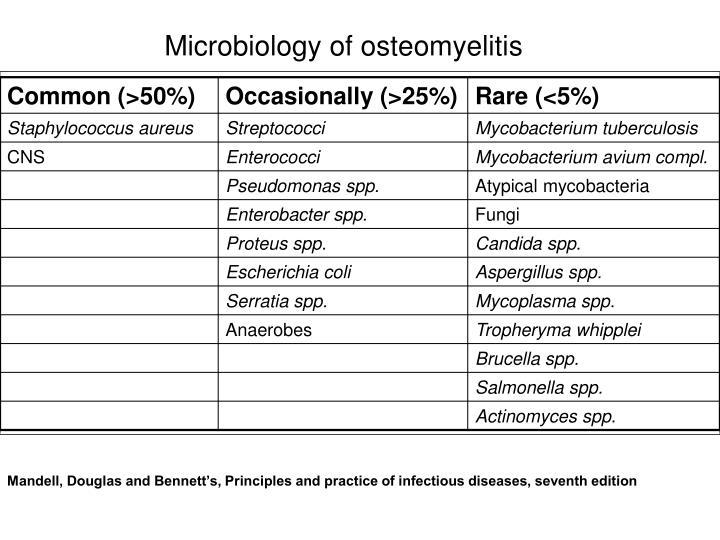 Microbiology of osteomyelitis