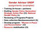 gender advisor undp assignments examples