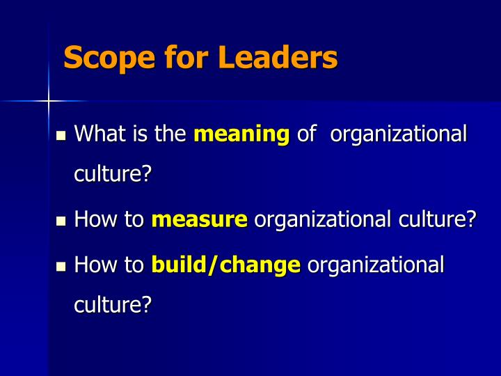 Scope for Leaders