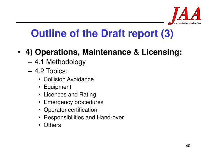 Outline of the Draft report (3)