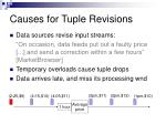causes for tuple revisions