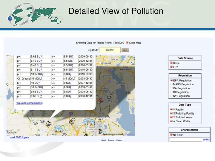 Detailed View of Pollution