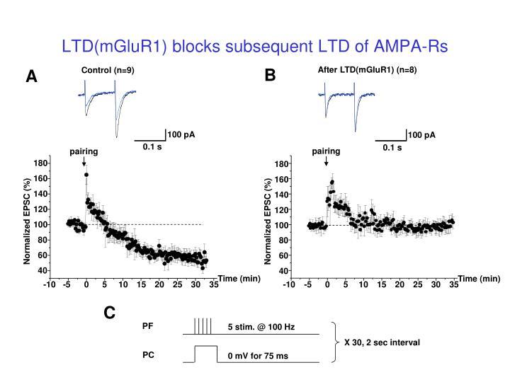 LTD(mGluR1) blocks subsequent LTD of AMPA-Rs