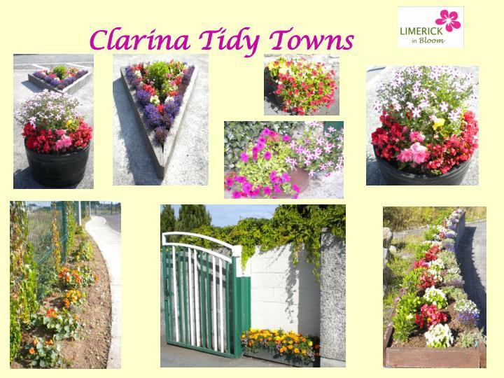 Clarina Tidy Towns