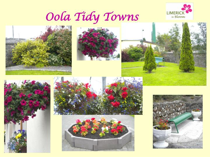 Oola Tidy Towns