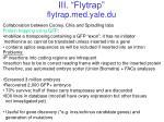 iii flytrap flytrap med yale du