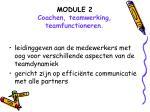 module 2 coachen teamwerking teamfunctioneren