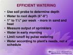 efficient watering