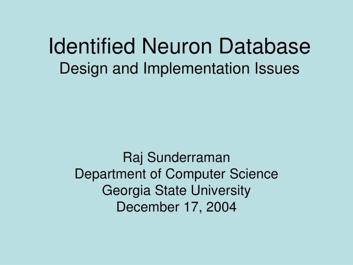 identified neuron database design and implementation issues n.