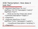 icsi transcription how does it look like