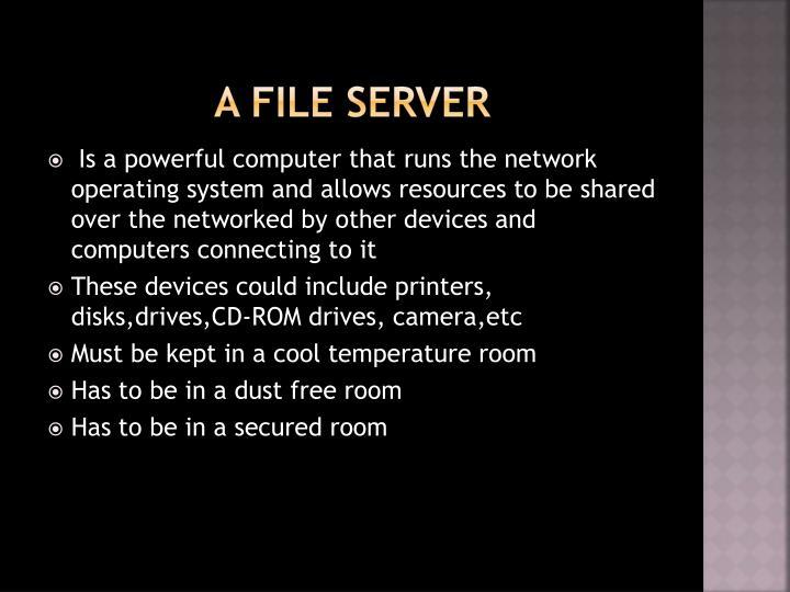 A file server
