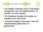 wat vinden de indi rs van nederland