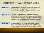 example opac division goals