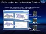 ibm focused on mashup security and standards