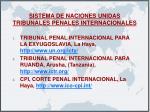sistema de naciones unidas tribunales penales internacionales