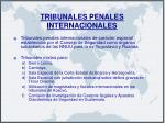 tribunales penales internacionales