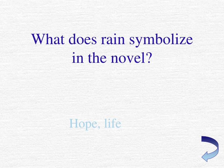 What does rain symbolize in the novel?