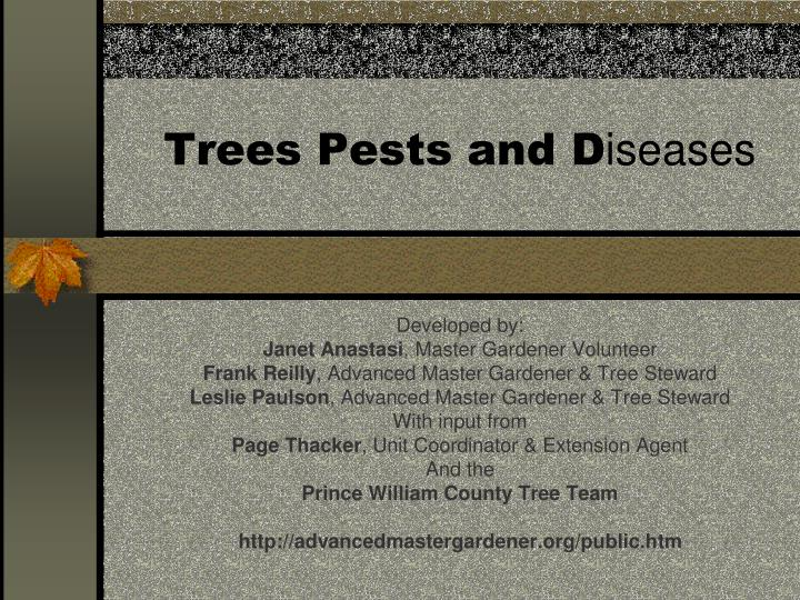 trees pests and d iseases n.