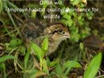opba will improve habitat quality abundance for wildlife