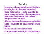 tundra1