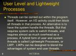 user level and lightweight processes