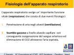 fisiologia dell apparato respiratorio