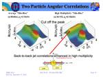 two particle angular correlations5