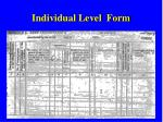individual level form
