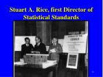 stuart a rice first director of statistical standards
