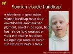 soorten visuele handicap
