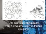ons oog is geoptimaliseerd voor het waarnemen van fractale structuren