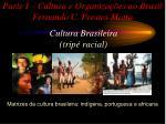 parte i cultura e organiza es no brasil fernando c prestes motta