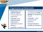 organizarea profesional