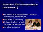 verschillen lwoo team maasland en andere teams 3