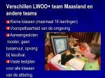verschillen lwoo team maasland en andere teams